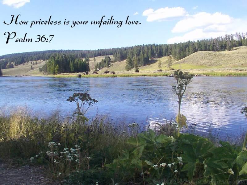 The peace of God brings Gods Unfailing Love