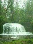 Wild Waterfall