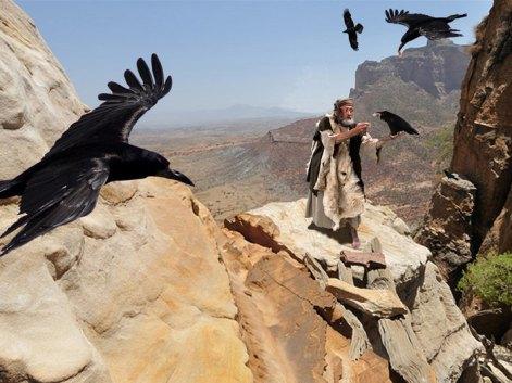 010-elijah-fed-by-ravens