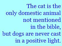 cats and dogs in the Bible