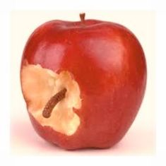 worm-inside-apple