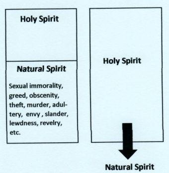 natural-spirit